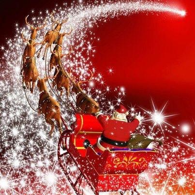 Bonnes FETES Noel_411