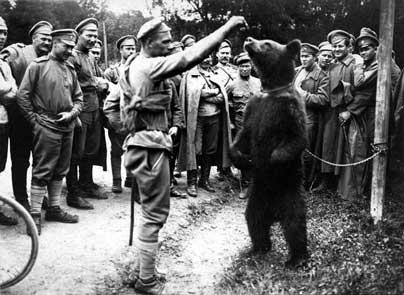 Les brigades Russes en France Brigad41