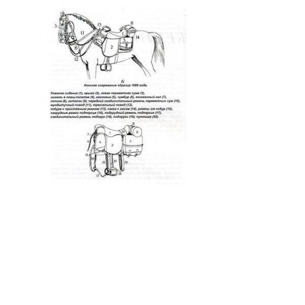 La cavalerie Russia15