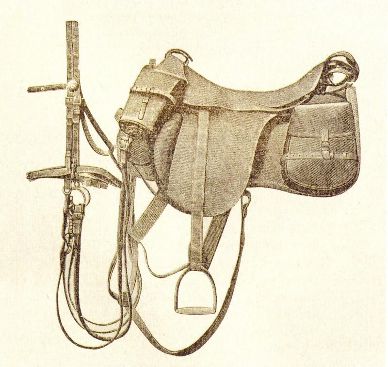 La cavalerie Seller24