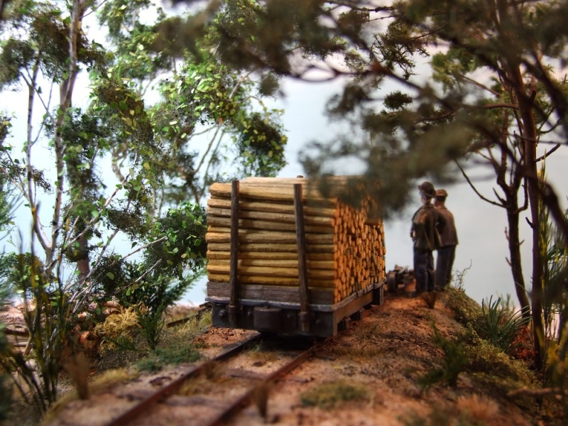 Sur la ligne forestière Contaut le Huga Ancien12