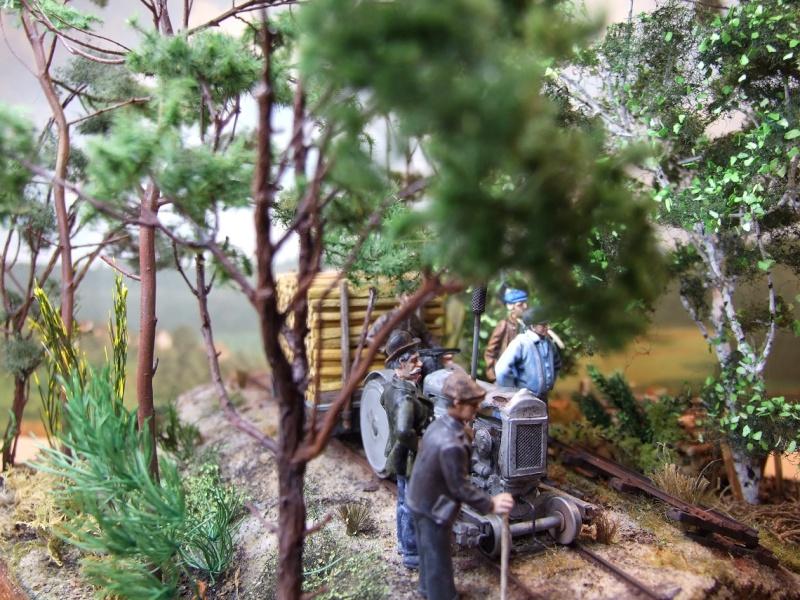 Sur la ligne forestière Contaut le Huga Ancien14