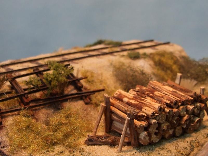 Sur la ligne forestière Contaut le Huga Maquet11