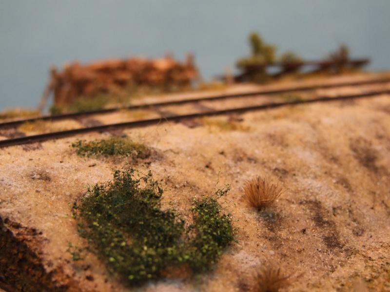 Sur la ligne forestière Contaut le Huga Maquet12