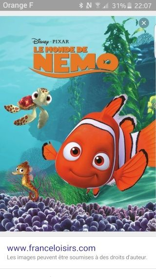 montage nemo Screen21