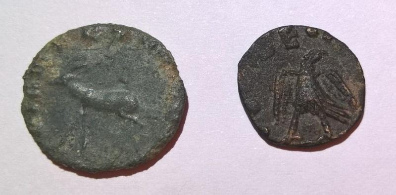 """Antoninien de Gallien """"DIANAE CONS AVG"""" Antilope ou gazelle Wp_20113"""