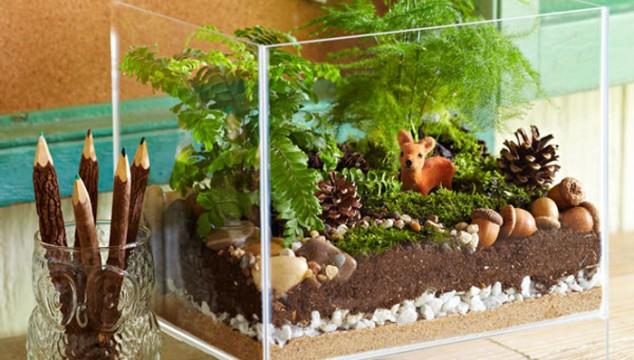 Minis jardins! Voici quelques modèles! Amazin10