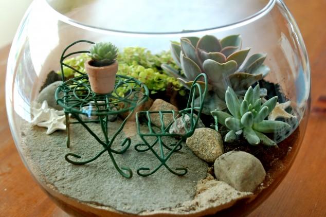 Minis jardins! Voici quelques modèles! Dsc_0010