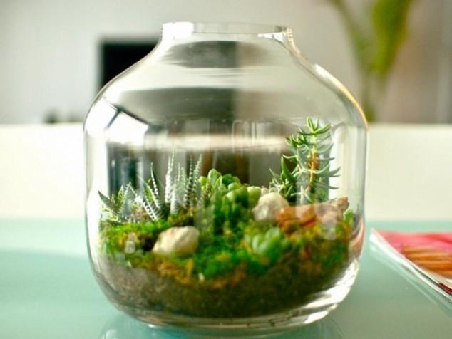 Minis jardins! Voici quelques modèles! Miniat10