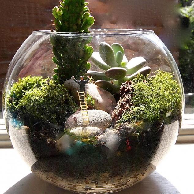 Minis jardins! Voici quelques modèles! Origin10