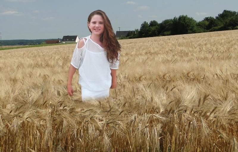 Montage champ de blé R-201310