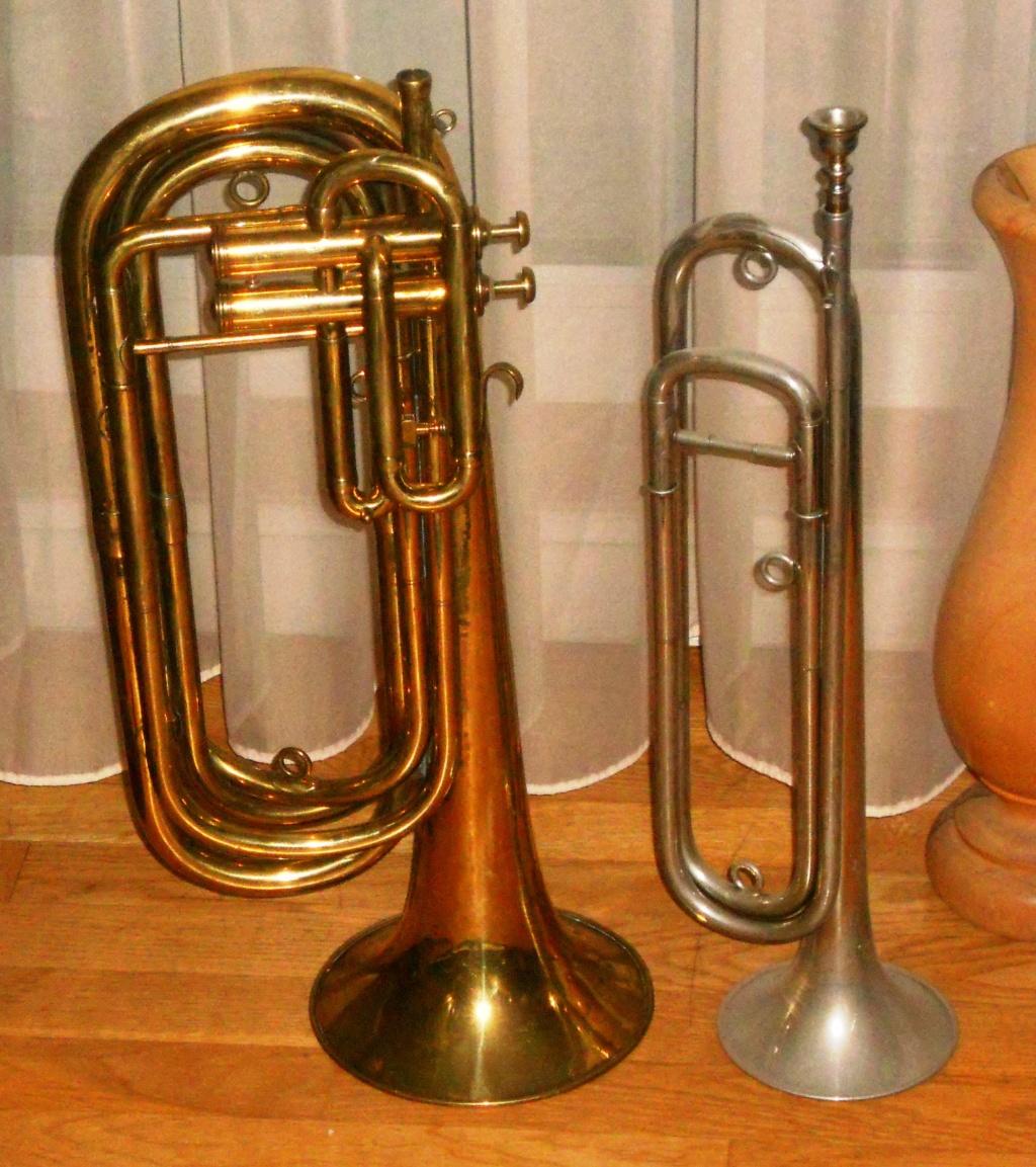 Les instruments de musique : caisses - tambours - clairons - trompettes  - Page 3 Dscn0120