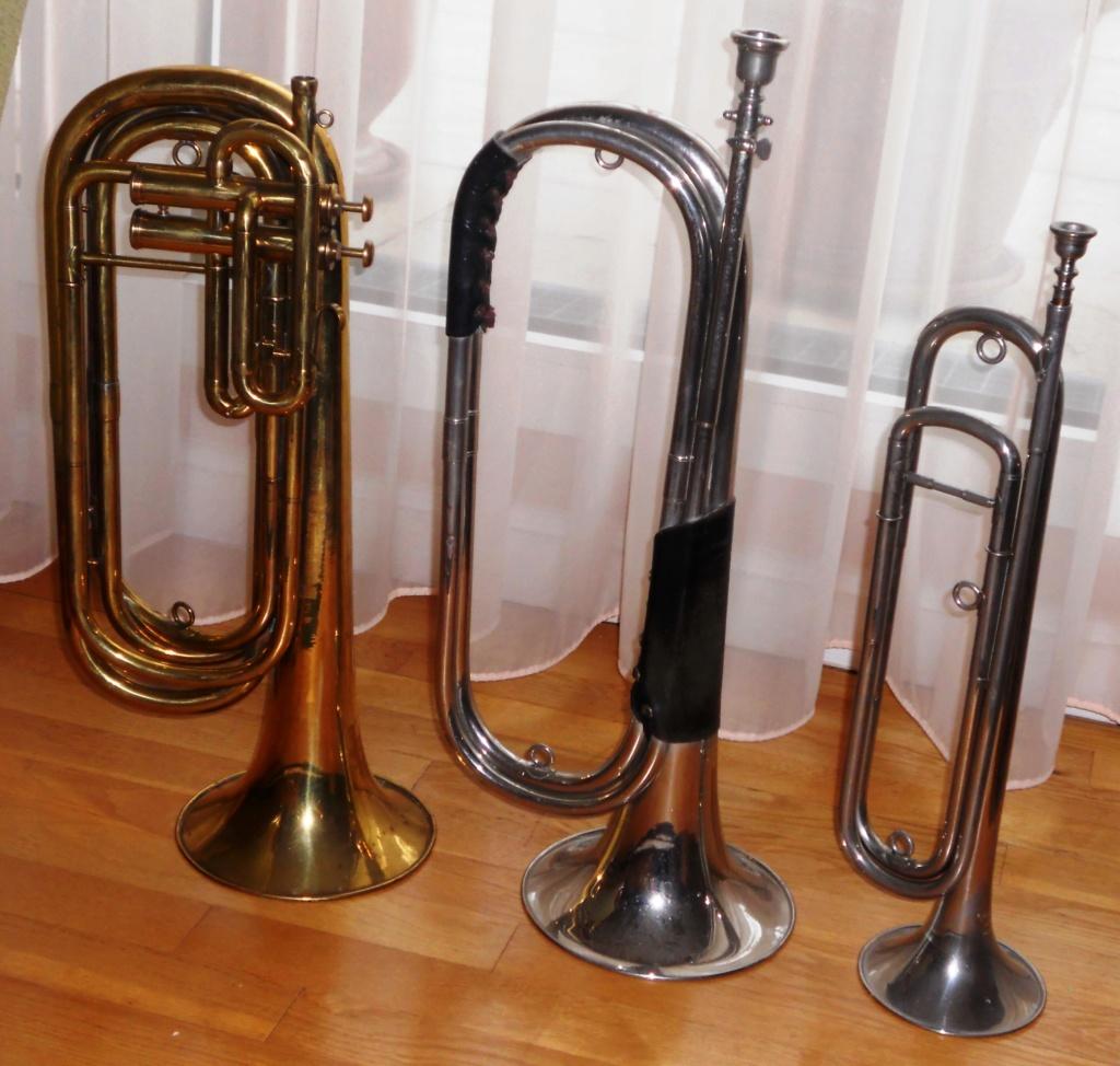 Les instruments de musique : caisses - tambours - clairons - trompettes  - Page 3 Dscn0315