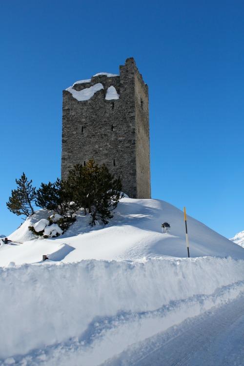 8° SnowRaduno Livigno 23-24 Gennaio 2016 _mg_7110
