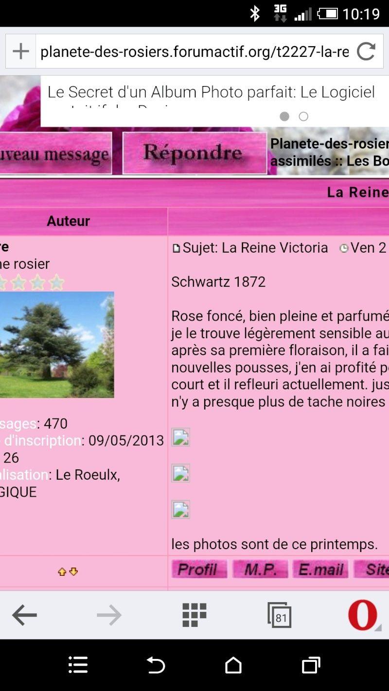 La Reine Victoria - Schwartz 1872 Screen12