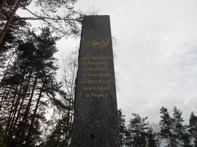 La bataille du Linge 1915 Dscn2058