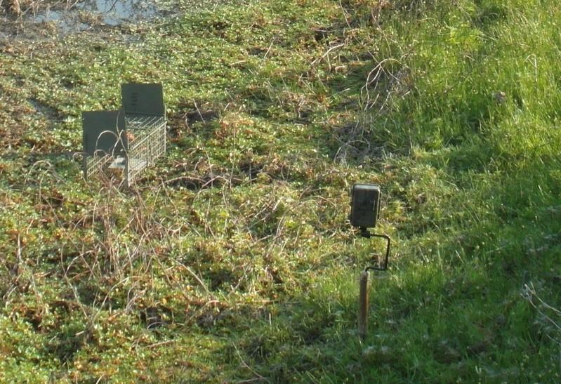 Achat camera Num'axes sl 1008 Camyra10