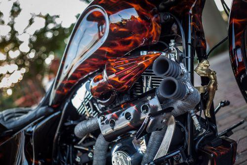 El Fuego ..... Bagger13