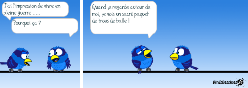 Quelques Birds ? 14507311