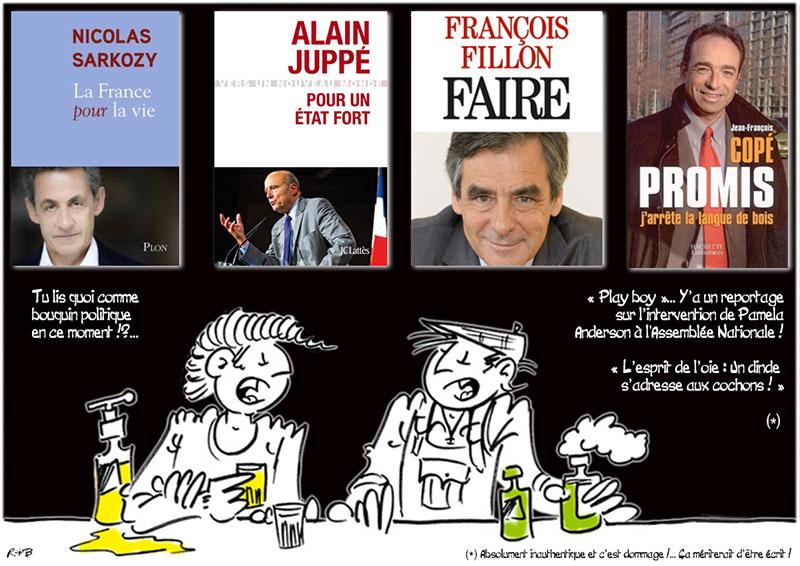 Actu en dessins de presse - Attention: Quelques minutes pour télécharger - Page 6 Bouqui11