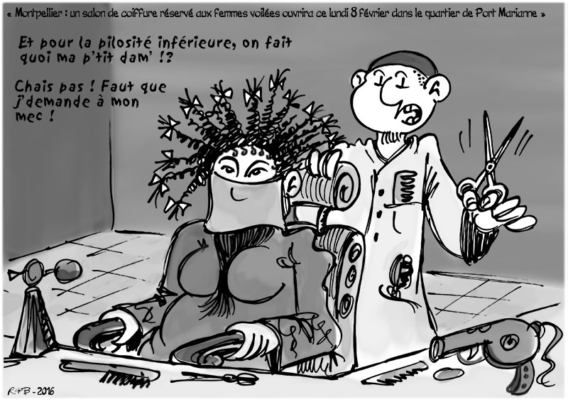 Actu en dessins de presse - Attention: Quelques minutes pour télécharger - Page 6 Coiffu10