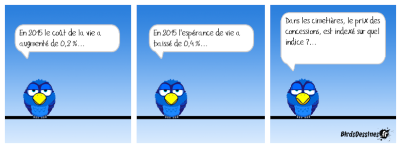 Quelques Birds ? Killbu10