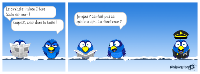 Quelques Birds ? Mister10
