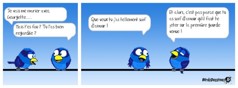 Quelques Birds ? Pas_d_10