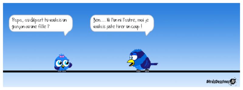Quelques Birds ? Pas_d_18
