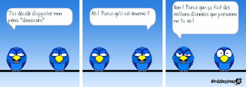 Quelques Birds ? Pas_d_24