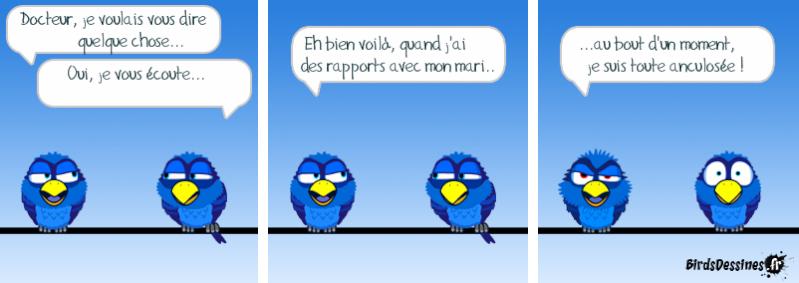 Quelques Birds ? Pas_da11