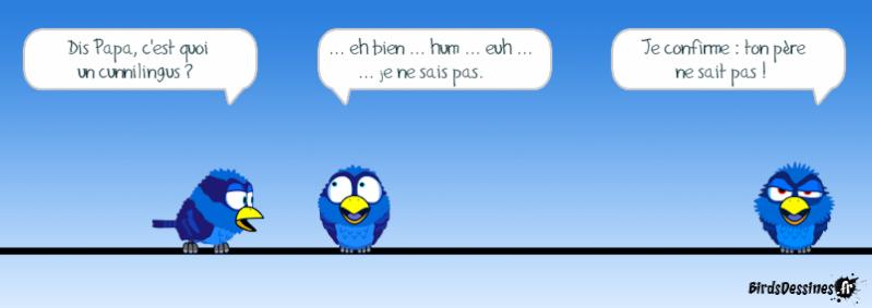 Quelques Birds ? Pas_da13