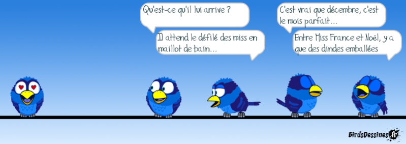 Quelques Birds ? Wpid-w13