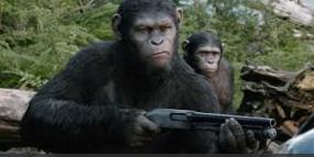 Angriff der Tiere auf die Menschen Caesar14