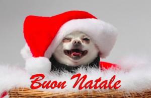 Buon Natale Immagi10