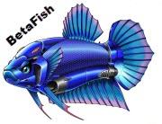 Betafish 1.2.1 Betafi10