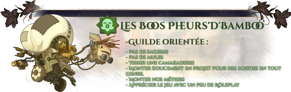 Bienvenue chez Les Boos Fheur'D'Bamboo