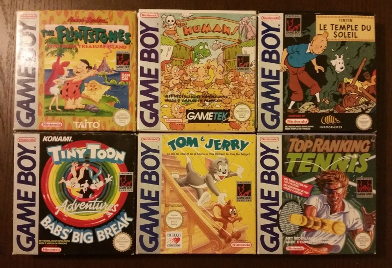 Mon full set gameboy FAH (boite + loose) 2110