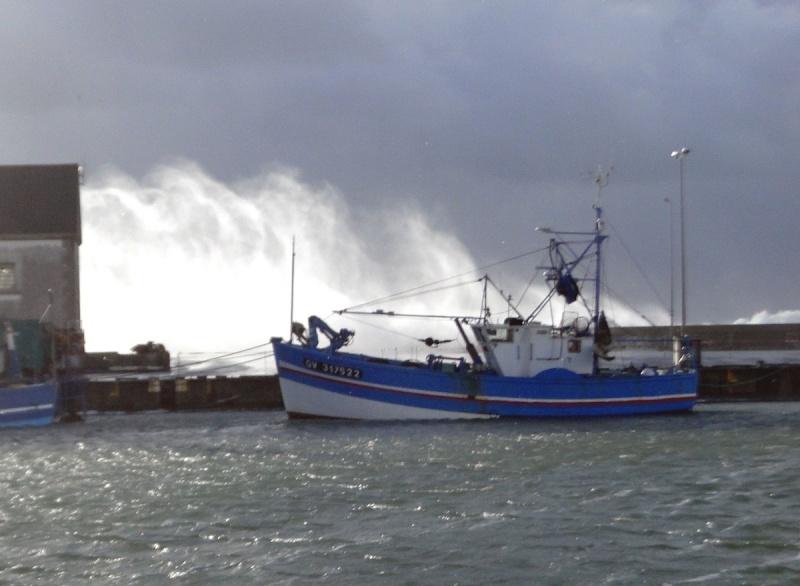 [VIE DES PORTS] Quelques bateaux de pêche (sur nos côtes Françaises) - Page 21 Pal2ab10