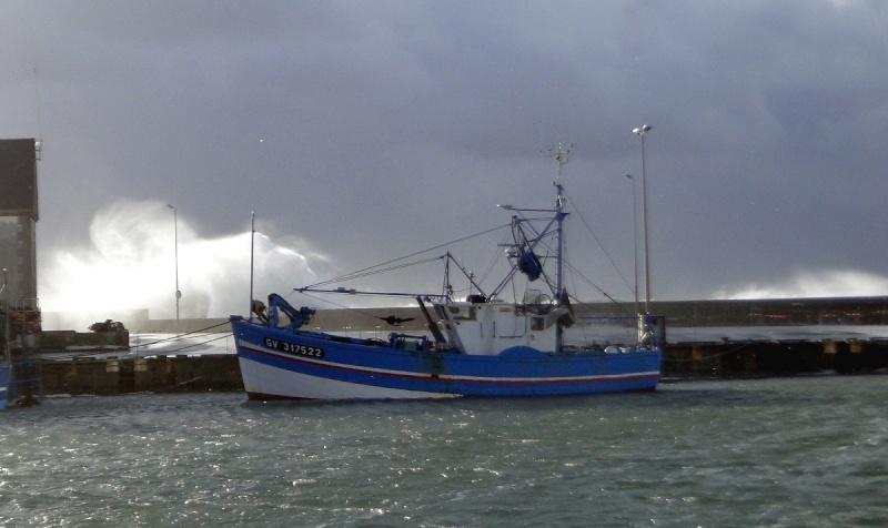 [VIE DES PORTS] Quelques bateaux de pêche (sur nos côtes Françaises) - Page 21 Pal3ab10