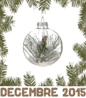 MOIS DE DECEMBRE 2015 Dec_2011