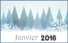 MOIS DE JANVIER 2016 Janvie10
