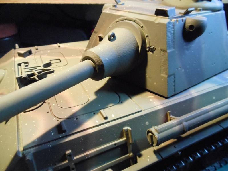 Taigen's new Panther F Dscn1312