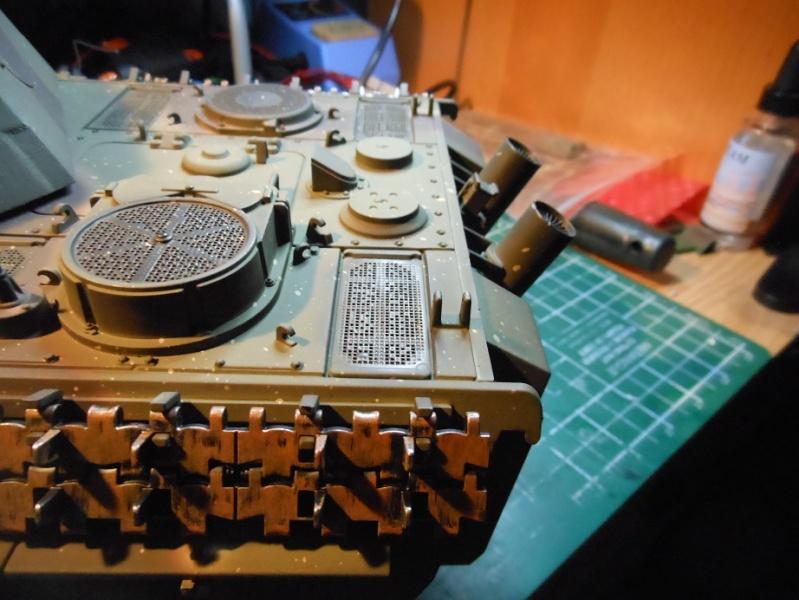 Taigen's new Panther F Dscn1314