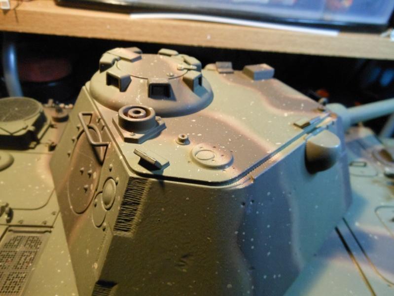 Taigen's new Panther F Dscn1315