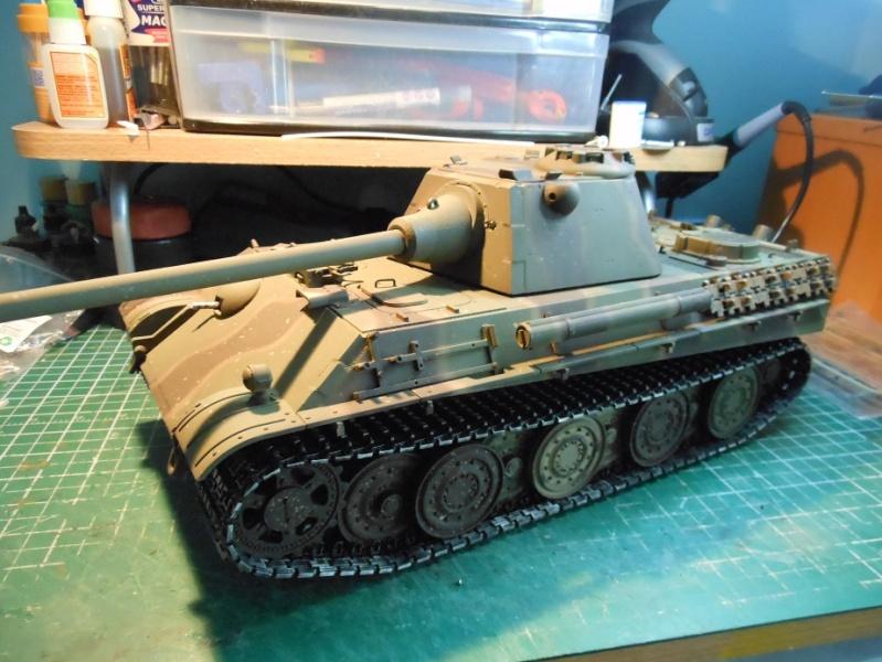 Taigen's new Panther F Dscn1317