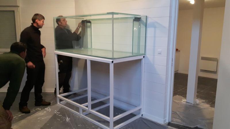 Nouvelle Maison / Nouveau projet : Alexpilon's reef tank 3 - Page 3 20151111