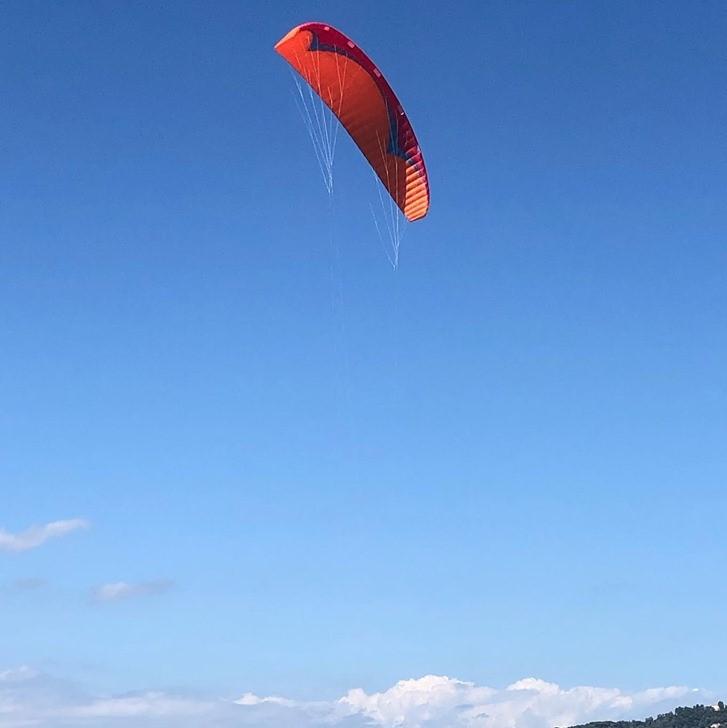 Ailes Flymaax   67878310