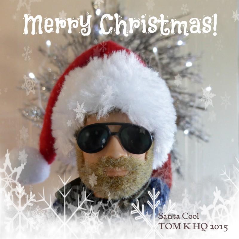 Merry Christmas Everyone Santa_10