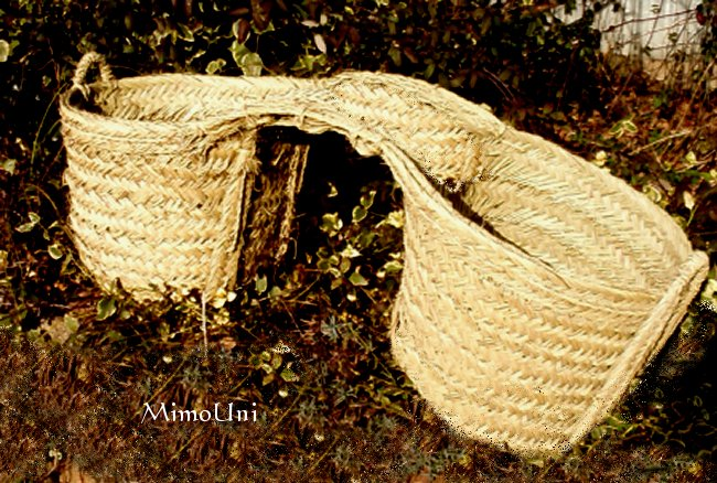 Livre  Photo - Le Passé Agricole d'Ouled Mimoun Chouar10